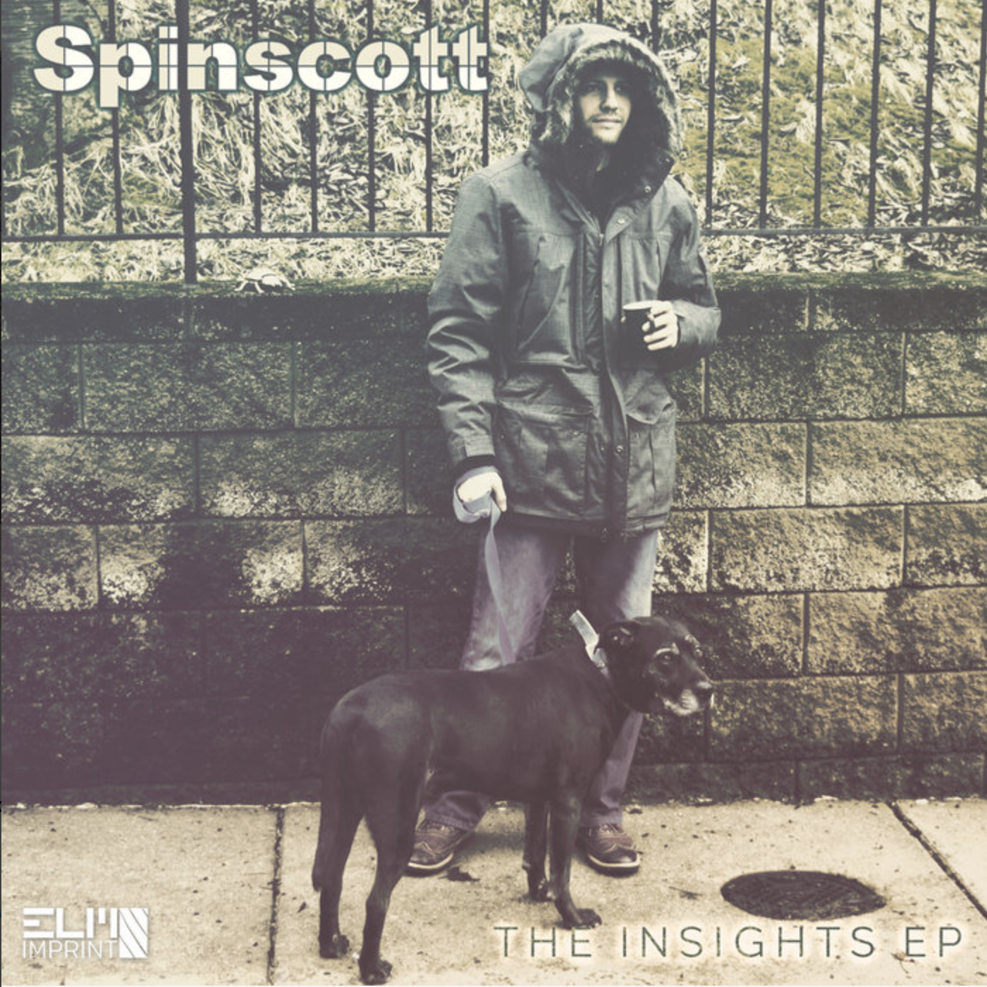 spinscott insights cover
